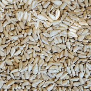 Sunflower kernels  Bakery Grade